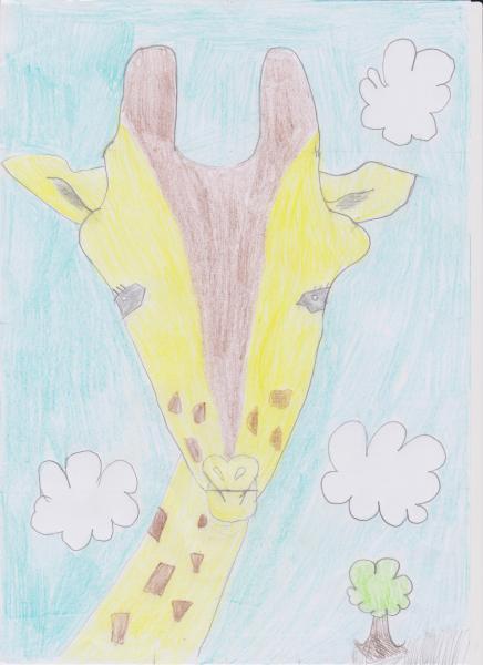Jessie-Giraffe-Drawing