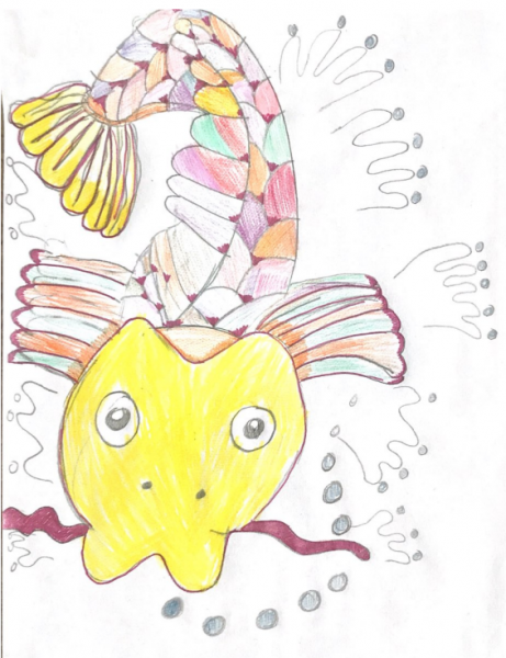 ava-fish